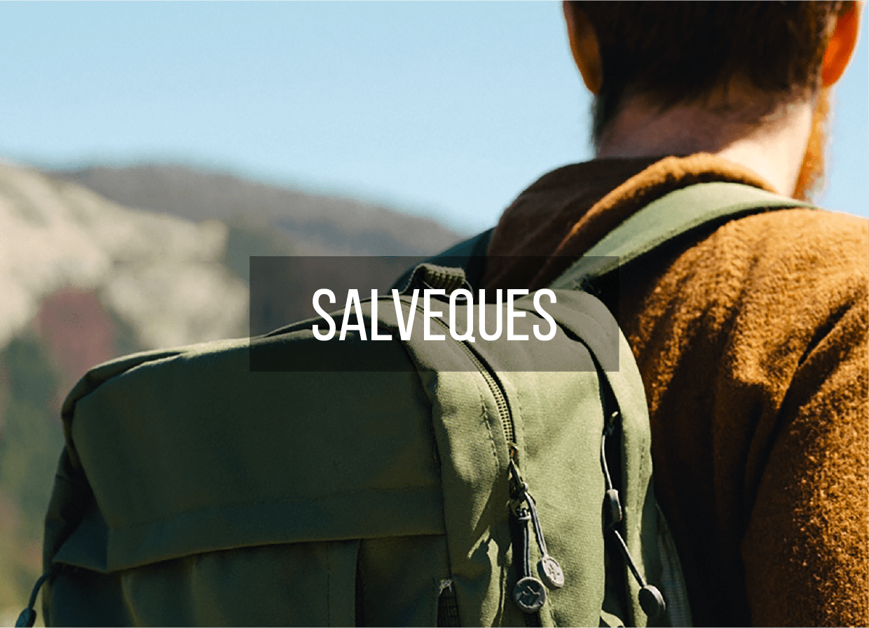 Salveques